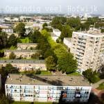 Oneindig veel hofwijk/Jolanda Hoogendoorn