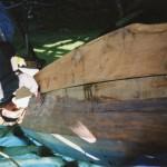 Onderschip is geheel vernieuwd met eiken delen in 2001